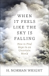 When it Feels Like the Sky is Falling - How to Find Hope in an Uncertain World